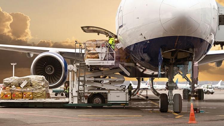 Tại Việt Nam hiện chưa có hãng hàng không vận chuyển hàng hóa chuyên biệt.