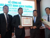 Phục hồi thành công cây Trường xanh trong Khu di tích Phủ Chủ tịch
